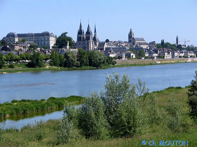 Blois 021 C-Mouton