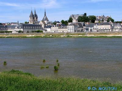 Blois 020 C-Mouton