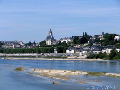 Blois 010 C-Mouton