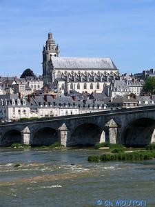 Blois 018 C-Mouton