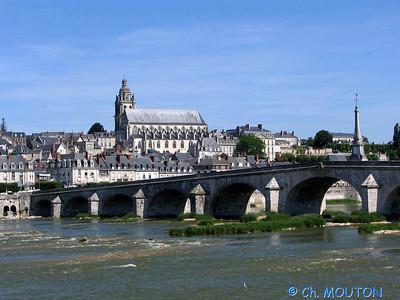 Blois 017 C-Mouton