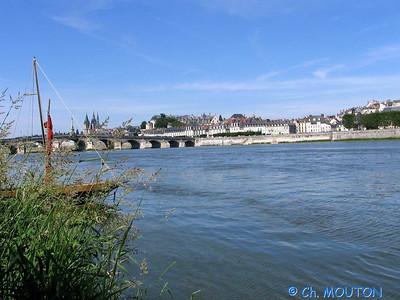 Blois 009 C-Mouton