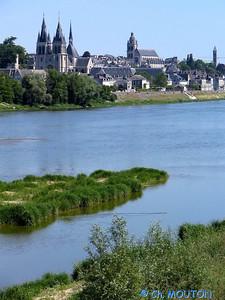 Blois 022 C-Mouton