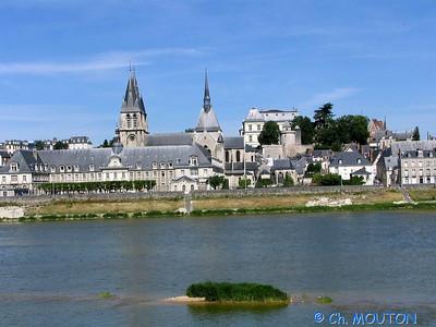 Blois 015 C-Mouton