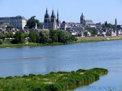 Blois 023 C-Mouton