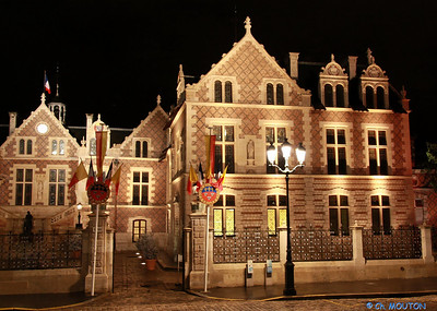 Hotel Groslot Orleans 876 C-Mouton