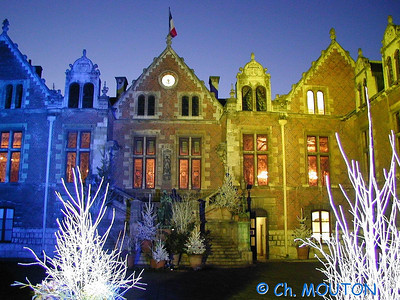Orléans Hotel Groslot 17 C-Mouton