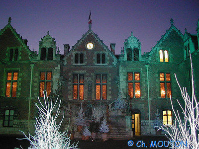 Orléans Hotel Groslot 25 C-Mouton