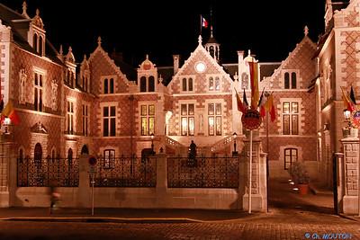 Hotel Groslot Orleans 871 C-Mouton