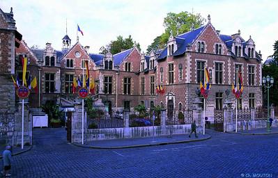 Orléans Hotel Groslot 15 C-Mouton