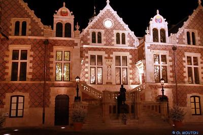 Hotel Groslot Orleans 874 C-Mouton