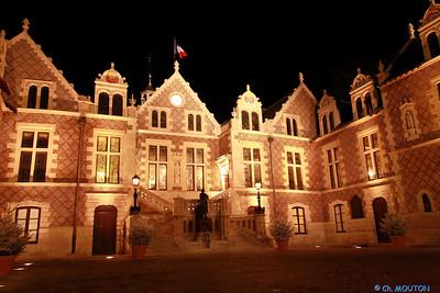 Hotel Groslot Orleans 873 C-Mouton