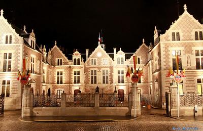 Hotel Groslot Orleans 877 C-Mouton