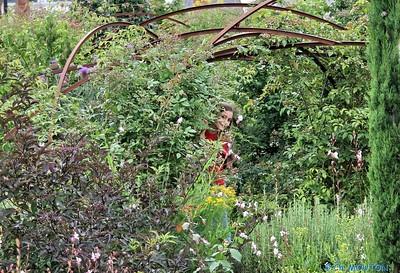 Jardin des plantes 1 C-Mouton