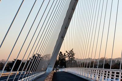 Orleans - Pont de l'Europe 35 C-Mouton