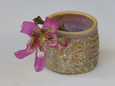 textured cup with Chorysia speciosa flower