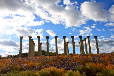 Capitol Columns, the National Arboretum, Washington, DC, October 2016.