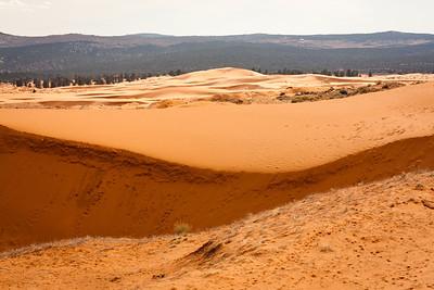 """Potěšila nás krátká neplánovaná návštěva státního parku """"korálově růžové duny"""", kde jsme si krásně zablbli v písku."""