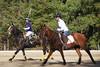 Chukkar Farm Polo - November 7, 2011 119