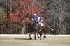 Chukkar Farm Polo - November 7, 2011 141