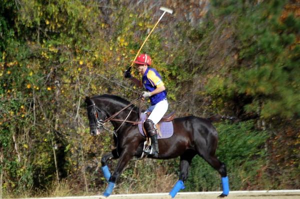Chukkar Farm Polo - November 7, 2011 105