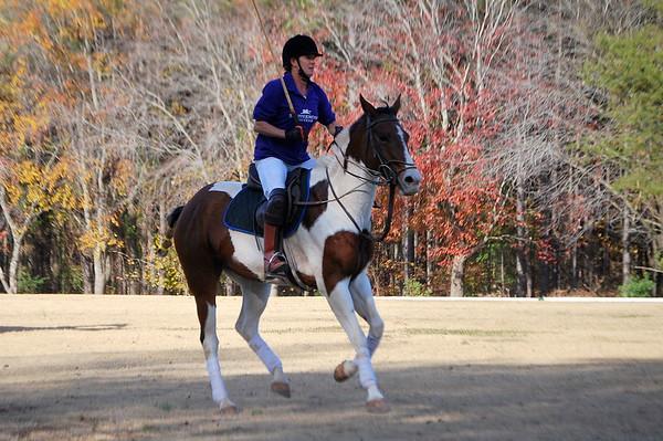 Chukkar Farm Polo - November 7, 2011 068