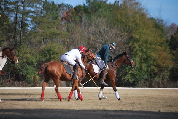 Chukkar Farm Polo - November 7, 2011 064