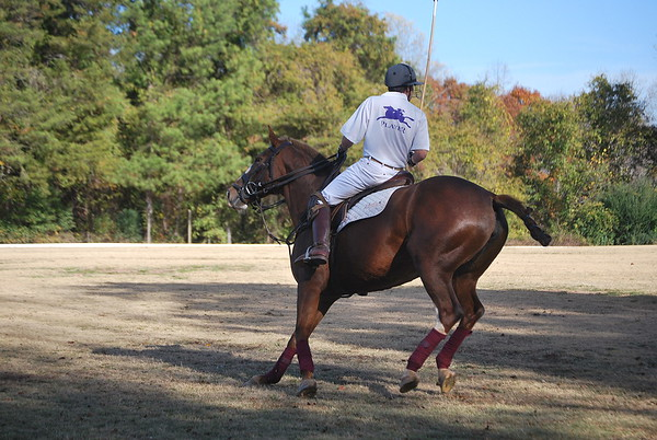 Chukkar Farm Polo - November 7, 2011 057