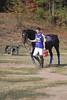 Chukkar Farm Polo - November 7, 2011 135