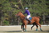 Chukkar Farm Polo - November 7, 2011 138