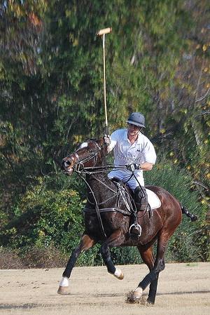 Chukkar Farm Polo - November 7, 2011 128
