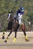 Chukkar Farm Polo - November 7, 2011 124