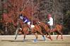 Chukkar Farm Polo - November 7, 2011 171