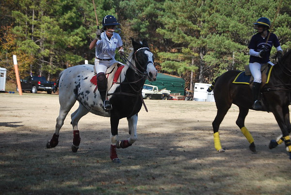 Chukkar Farm Polo - November 7, 2011 034