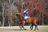 Chukkar Farm Polo - November 7, 2011 139