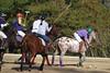 Chukkar Farm Polo - November 7, 2011 083