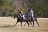 Chukkar Farm Polo - November 7, 2011 023
