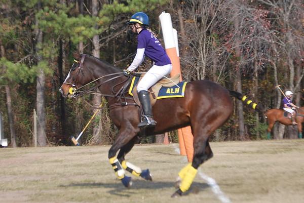 Chukkar Farm Polo - November 7, 2011 125