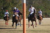 Chukkar Farm Polo - November 7, 2011 163