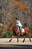 Chukkar Farm Polo - November 7, 2011 117
