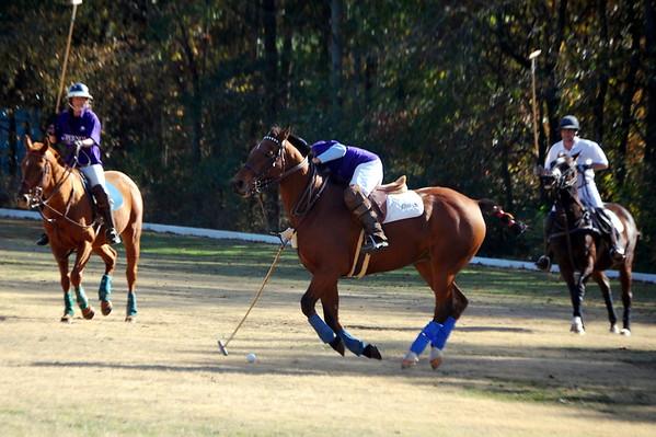 Chukkar Farm Polo - November 7, 2011 006