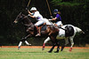 May 30th Polo Match and Aunt Ellens 066
