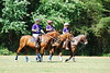 May 30th Polo Match and Aunt Ellens 300