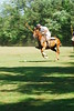 May 30th Polo Match and Aunt Ellens 293