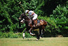 May 30th Polo Match and Aunt Ellens 063