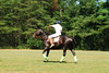 May 30th Polo Match and Aunt Ellens 278