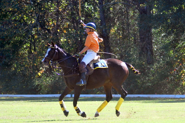 Chukkar Farm Polo - Polo for Parkinson's - October 16, 2011 342