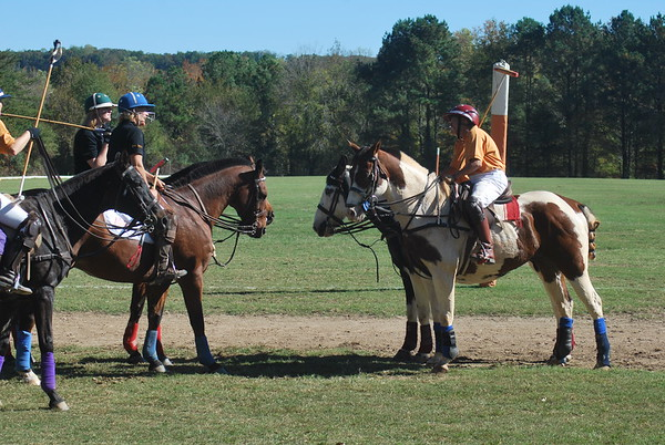 Chukkar Farm Polo - Polo for Parkinson's - October 16, 2011 374