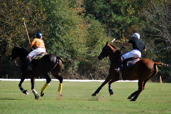 Chukkar Farm Polo - Polo for Parkinson's - October 16, 2011 358