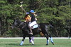 Chukkar Farm Polo - Polo for Parkinson's - October 16, 2011 323